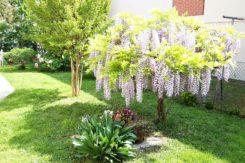 Giardino Di Barbara Cimatti