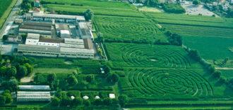 Festival terrena epilogo nel labirinto di alfonsine con i for Labirinto alfonsine