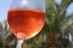 Vino Rosato 668x501