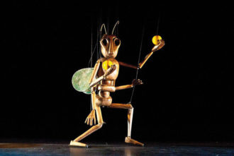 String Theater THE INSECT CIRCUS