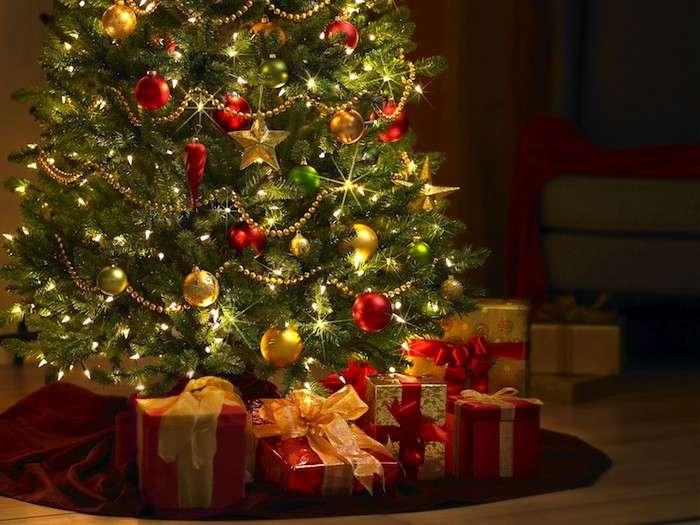 Albero Di Natale Regali.Appello Da Roncalceci Date Una Seconda Vita Ai Vostri Alberi Di Natale