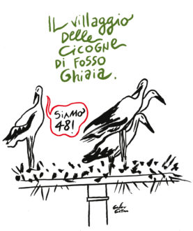 Villaggio Cicogne Costantini