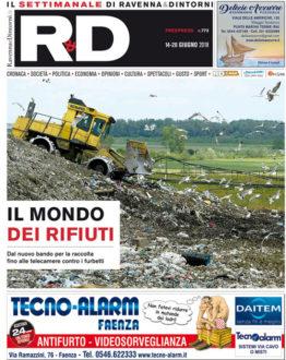 01 1306 RADIN Cover