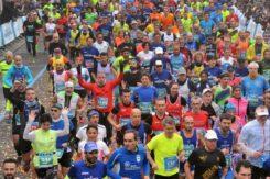 CS Maratona 2 6715