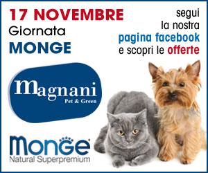 MAGNANI SOGGETTO MONGE – HOME MRB1 10 – 17 11 18
