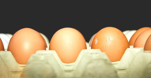 Eggs Food Tray 85080
