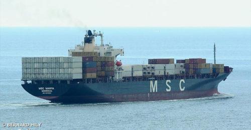 MSC MANYA (1)