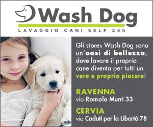 WASH DOG HOME MRT 04 – 31 03 19
