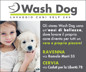 WASH DOG HOME MRT 04 – 31 03 19