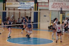 Liverani Castellari 23.3.2019