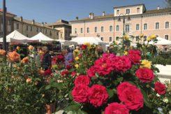 Ravenna In Fiore 2